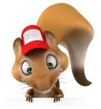 Fun squirrel Royalty Free Stock Image