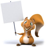 Fun squirrel Royalty Free Stock Image