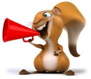 Fun squirrel Royalty Free Stock Photos