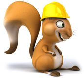 Fun squirrel Stock Photography
