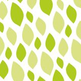 Pattern Of Green Leaves  Stock Photos
