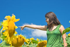 Fun in the sunflower field. Young woman having fun in the sunflower field stock photo