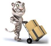 Fun tiger Stock Photography