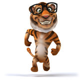Fun tiger Royalty Free Stock Photos