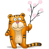 Fun tiger with sakura. Fun tiger with branch of sakura Royalty Free Stock Images