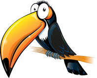 Fun toucan cartoon Stock Photo