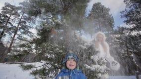 Fun, tree, snow. stock video footage