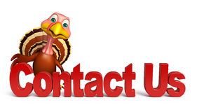 fun Turkey  cartoon character with contact us sign Royalty Free Stock Photo