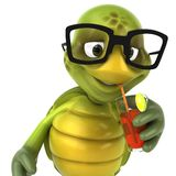 Fun turtle. 3d generated picture Royalty Free Stock Photo