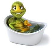 Fun turtle Stock Image