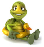 Fun turtle. 3d generated picture Stock Images