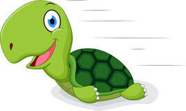 Fun turtle cartoon Stock Images