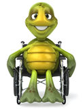 Fun turtle with a wheelchair. Fun turtle, 3d generated picture Royalty Free Stock Photography