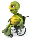 Fun turtle with a wheelchair Stock Images