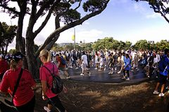 Fun Walk and Run Auckland. AUCKLAND- Mar. 14: Participants of Auckland Round the Bays, one of the world's largest fun walk and run with an estimated 70,000 Royalty Free Stock Images