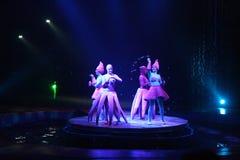 Fun water circus Stock Photo