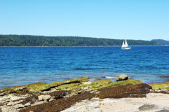 Fun on the water. Picture of a sail boat around Salt Spring Island Island,BC,Canada Stock Image