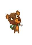 Fun Wild Bear Stock Image
