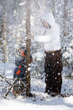 Fun in the winter woods. Boy with mom shakes trees with snow Royalty Free Stock Image