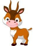 Fun zoo. Antelope Stock Image
