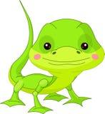 Fun zoo. Lizard. Fun zoo. Illustration of cute Lizard Royalty Free Stock Photography