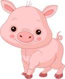 Fun zoo. Pig. Fun zoo. Illustration of cute Pig Stock Photos