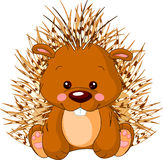 Fun zoo. Porcupine. Fun zoo. Illustration of cute Porcupine Stock Images