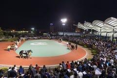 Funabashi Racecourse w Japonia Fotografia Stock