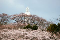 Funaoka在Funaoka城堡山顶的和平Kannon和樱桃树破坏公园,柴田,宫城, Tohoku,日本 免版税库存图片