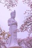 Funaoka fred Kannon (den Guanyin bodhisattvaen) arkivfoton