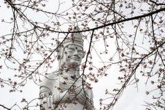Funaoka-Frieden Kannon und Kirschbäume auf der Bergspitze von Funaoka-Schloss ruinieren Park, Shibata, Tohoku, Japan Lizenzfreie Stockfotos