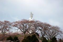 Funaokavrede Kannon en kersenbomen op de bergtop van Funaoka-het Park van de Kasteelruïne, Shibata, Miyagi, Tohoku, Japan Stock Foto