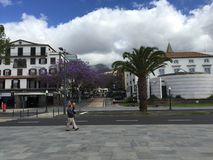 Funchal Fotografia Stock