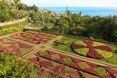funchal botaniczny ogród zdjęcie royalty free