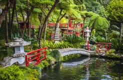 Funchal, isola del Madera, Portogallo. Fotografia Stock
