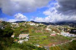 Funchal Madeira Stockfotos