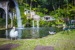Funchal, Madeira island, Portugal. Stock Images