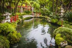 Funchal, Madeira island, Portugal. Royalty Free Stock Photo