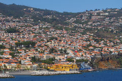 funchal madeira portugal arkivfoto