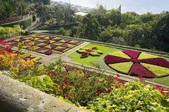 Funchal Madeira Portugal Botanical garden Stock Photos
