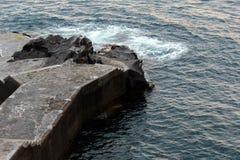Funchal, Madera immagini stock libere da diritti
