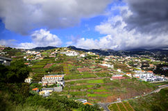 Funchal Madera Fotografie Stock