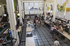 FUNCHAL, PORTUGAL - JUNE 25: Fresh fish in Mercado Dos Lavradore Royalty Free Stock Images