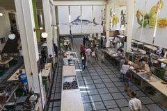 FUNCHAL, PORTUGAL - 25. JUNI: Frische Fische in Mercado Dos Lavradore Lizenzfreie Stockbilder