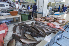 FUNCHAL, PORTUGAL - 25. JUNI: Frische Fische in Mercado Dos Lavradore Stockbild