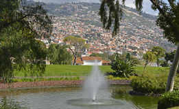 Funchal from St Catherine's Park, Madeira, Portugal Royalty Free Stock Photos