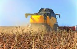 Funcionamento amarelo da ceifeira em um campo de trigo Agronomia, o conceito imagem de stock