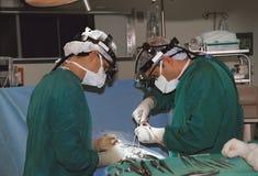 Funcionamento de dois cirurgiões Fotografia de Stock Royalty Free