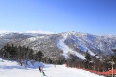 Funcionamento de esqui Imagem de Stock