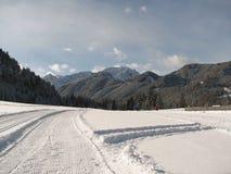 Funcionamento de esqui através dos campos Imagem de Stock